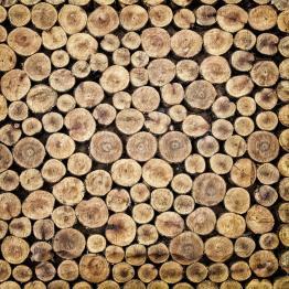 Стока дров